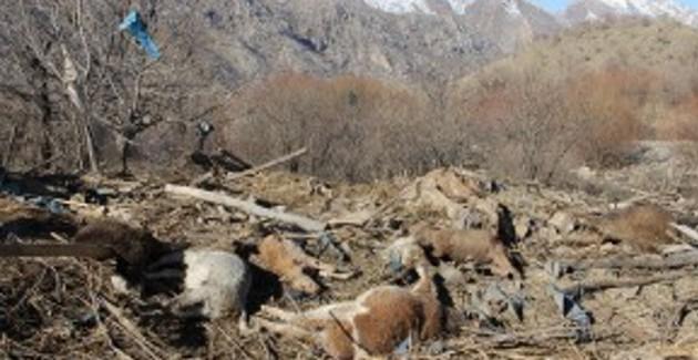 La Turchia bombarda di nuovo villaggi sulle montagne di Qandil