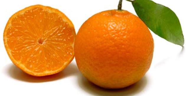 Clementine biologiche calabre a sostegno della ricostruzione della città martire di Cizre