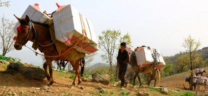 Un Kolbar ferito e decine costretti a denudarsi nel Rohjilat