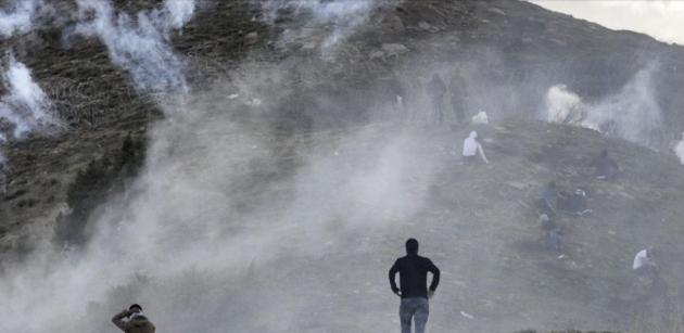 La geografia curda sta bruciando e gli ambientalisti turchi stanno a guardare