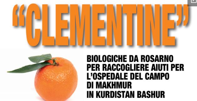 Clementine biologiche da Rosarno per l'ospedale del campo di Makhmur